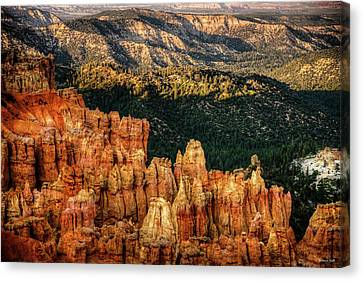 Sunsets In The Canyon Canvas Print by Rebecca Hiatt