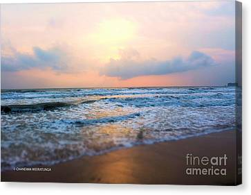 Sunsetting Beach Canvas Print by Chandima Weeratunga