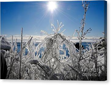 Sunshine And Ice Canvas Print