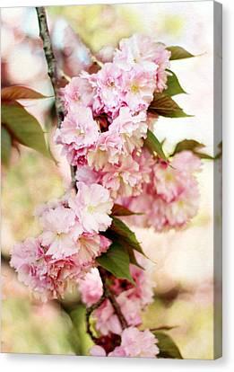 Sunshine Blossom Canvas Print