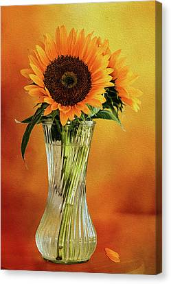 Sunshine In A Vase Canvas Print by Diane Schuster