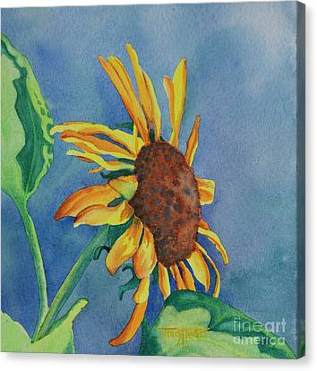 Sunshine On My Shoulders Canvas Print by Tracy L Teeter