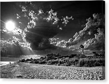 Chrystal Canvas Print - Sunshine On Sanibel Island In Black And White by Chrystal Mimbs