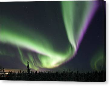 Super Aurora Canvas Print by Ronald Lafleur