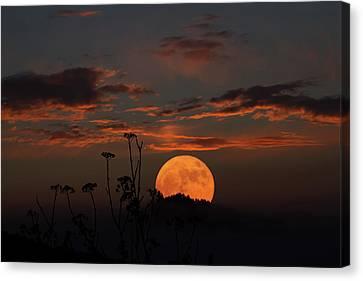 Super Moon And Silhouettes Canvas Print by John Haldane