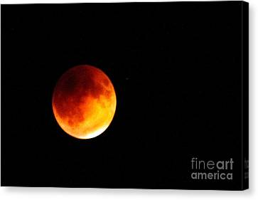 Super Moon Eclipse  Canvas Print by Robert Bales