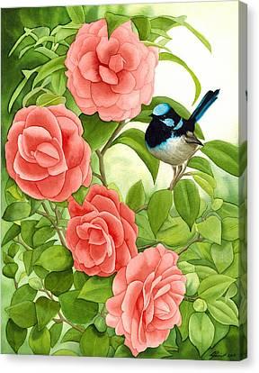 Superb Wren And Camellia Canvas Print