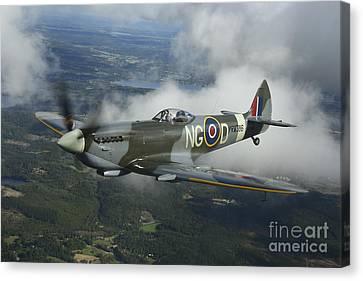 Supermarine Spitfire Mk.xvi Fighter Canvas Print by Daniel Karlsson