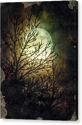 Supermoon At Retzer Nature Center- Wisconsin Canvas Print by Jennifer Rondinelli Reilly - Fine Art Photography