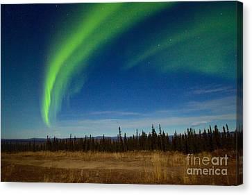Supermoon Aurora Canvas Print by Sean Griffin