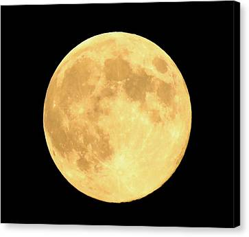 Supermoon Full Moon Canvas Print by Kyle West