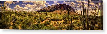 Superstition Mountain And Wilderness Canvas Print