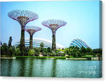 Supertrees Greenhouse And Dragonfly Lake - Singapore - Gardens By The Bay Canvas Print by Alina Davis