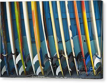 Surfboards Canvas Print by Dana Edmunds - Printscapes