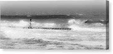 Surfer Girl Canvas Print by Ivo Kerssemakers
