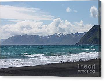 Surfer's Beach Canvas Print by Carolyn Brown