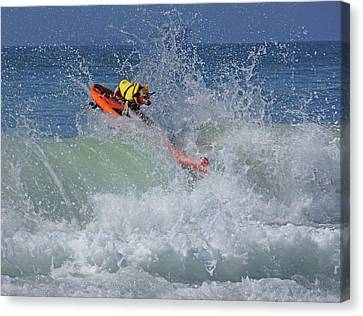 Surfing Dog Canvas Print by Thanh Thuy Nguyen