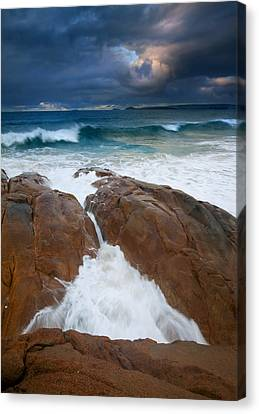 Surfs Up Canvas Print by Mike  Dawson