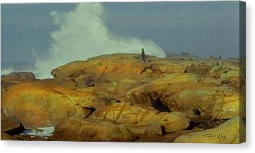 Surfwatcher Canvas Print by Frank Wilson