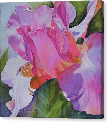 Surprise Canvas Print by H S Craig