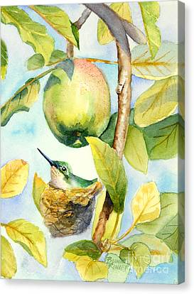 Surprise In The Apple Tree Canvas Print