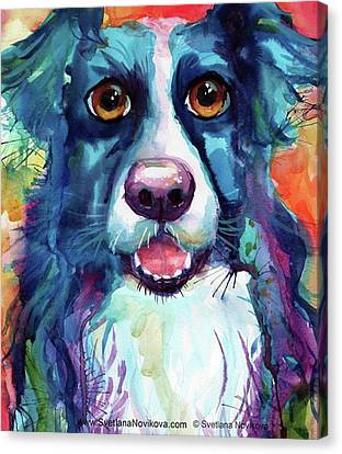 Portraits Canvas Print - Surprised Border Collie Watercolor by Svetlana Novikova