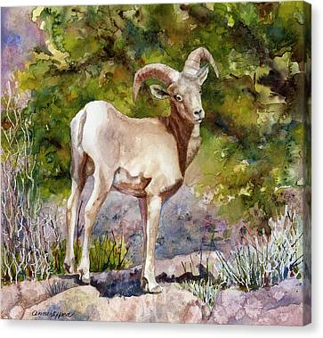 Canvas Print featuring the painting Surprised On The Trail by Anne Gifford