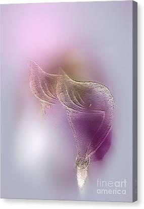 Canvas Print featuring the digital art Surreal Calla 2 by John Krakora