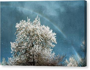Jamesbarber Canvas Print - Surreal Sky by James Barber