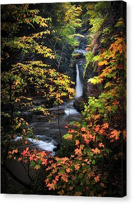 Surrounded By Fall Canvas Print