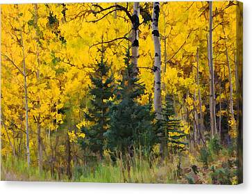 Surrounded By Gold Canvas Print