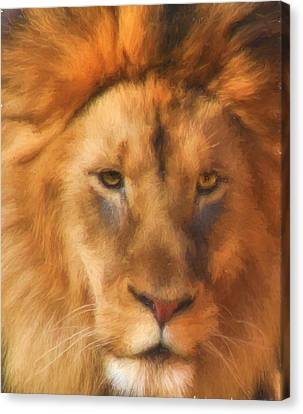 Lions Canvas Print - Surveying His Dominion by JC Findley