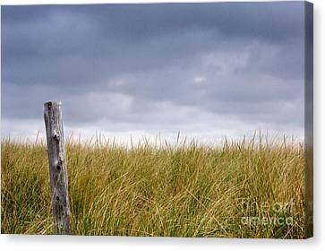 Canvas Print featuring the photograph That That Same Small Town In Each Of Us by Dana DiPasquale