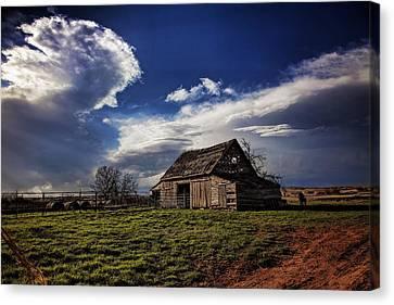 Surviving The Storms Canvas Print