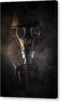 Survivor II Canvas Print
