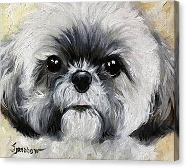 Shihtzu Canvas Print - Sushi by Mary Sparrow