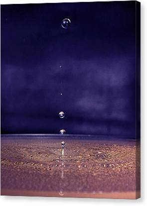 Canvas Print featuring the photograph Suspended by Alan Raasch