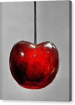 Suspended Cherry Canvas Print