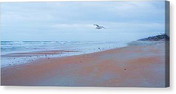 Suspended  Canvas Print by Cheryl Waugh Whitney