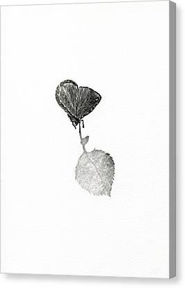 Suspense Canvas Print by Bella Larsson