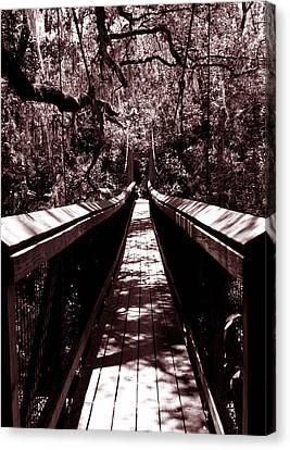Suspension Bridge Canvas Print by Bob Johnson
