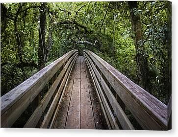 Suspension Bridge To Destiny Canvas Print by Carolyn Marshall