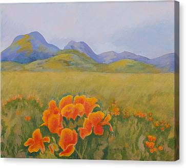 Sutter Buttes With California Poppies Canvas Print