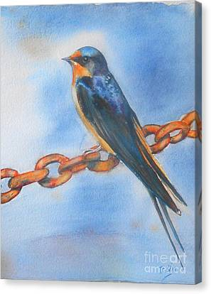 Swallow Canvas Print - Swallow by Patricia Pushaw