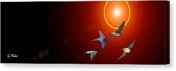 Swallows In Flight Canvas Print by George Pedro