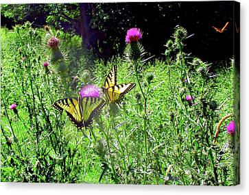 Canvas Print - Swallowtail Butterflies And Company by Patricia Keller