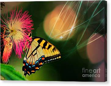 Swallowtail Dreams Canvas Print by Karin Everhart