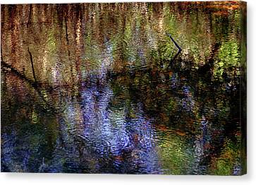 Swamp Abstract Canvas Print by Greg Mimbs