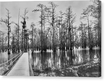 Swamp Dock Black And White Canvas Print by Ester  Rogers