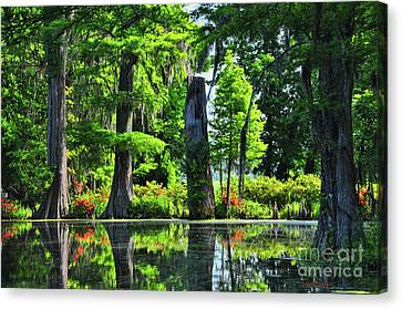 Swamp In Bloom Signed Canvas Print